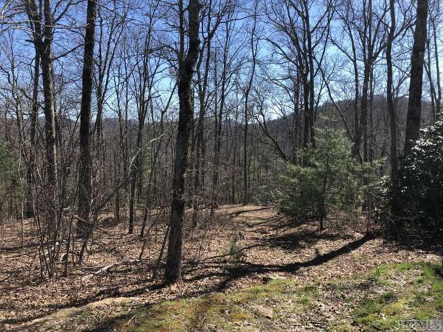 TBD Ridge View Road, Cullowhee, NC 28723 (MLS #90662) :: Berkshire Hathaway HomeServices Meadows Mountain Realty