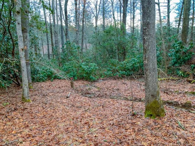 Prcl 3A Sapphire Valley Road, Sapphire, NC 28774 (MLS #90672) :: Berkshire Hathaway HomeServices Meadows Mountain Realty