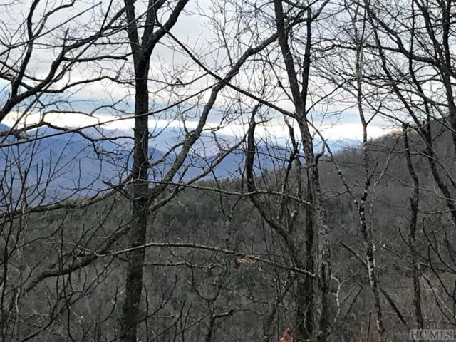 TBD Hurrah Ridge Road, Scaly Mountain, NC 28775 (MLS #90702) :: Pat Allen Realty Group