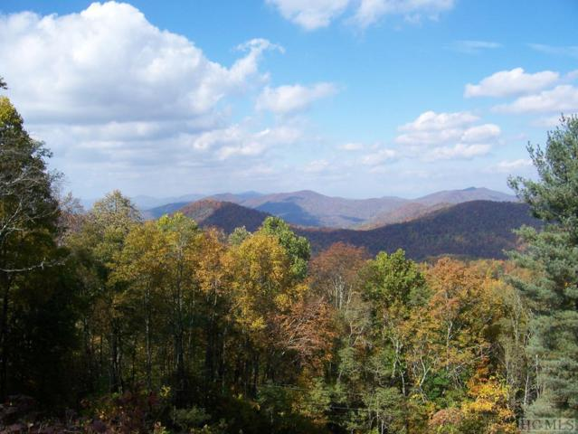 000 Glennview Lane, Franklin, NC 28734 (MLS #90750) :: Berkshire Hathaway HomeServices Meadows Mountain Realty