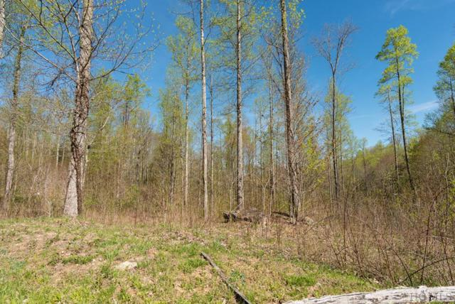 Lot 80 Sims Valley Road, Glenville, NC 28736 (MLS #90763) :: Berkshire Hathaway HomeServices Meadows Mountain Realty