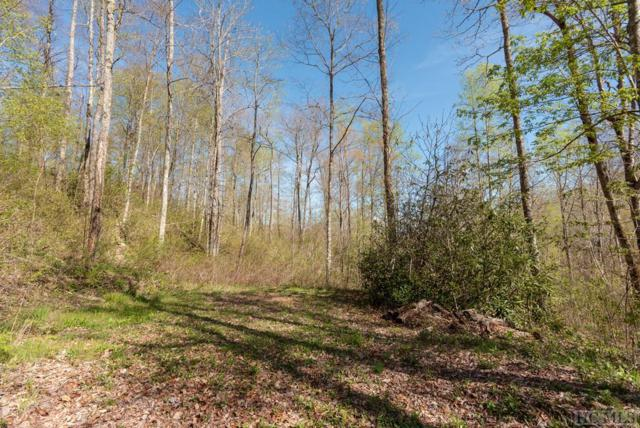 Lot 41 Sims Valley Road, Glenville, NC 28736 (MLS #90766) :: Berkshire Hathaway HomeServices Meadows Mountain Realty