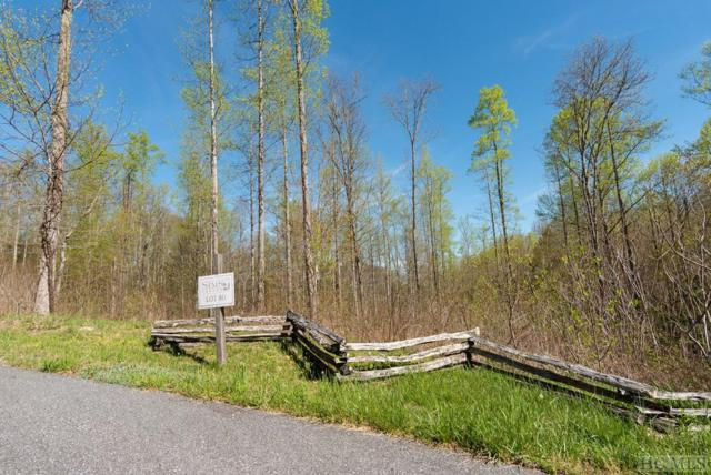 Lot 61 Sims Valley Road, Glenville, NC 28736 (MLS #90768) :: Berkshire Hathaway HomeServices Meadows Mountain Realty