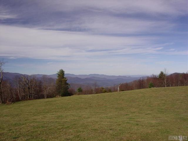 TBD Happy Hill Road, Scaly Mountain, NC 28779 (MLS #90836) :: Pat Allen Realty Group