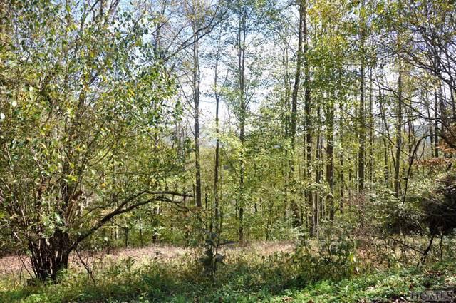 Lot 2 Oleander Lane, Sylva, NC 28779 (MLS #90899) :: Berkshire Hathaway HomeServices Meadows Mountain Realty