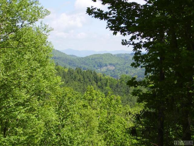 Lot 63 Compass Rose Way, Cullowhee, NC 28723 (MLS #90944) :: Berkshire Hathaway HomeServices Meadows Mountain Realty