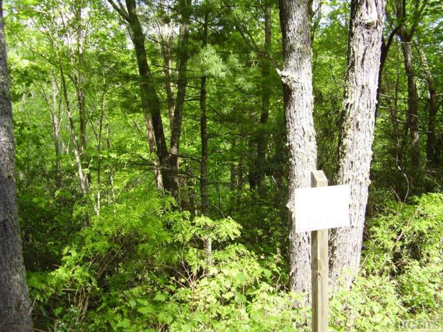 Lot 64 Compass Rose Way, Cullowhee, NC 28723 (MLS #90945) :: Berkshire Hathaway HomeServices Meadows Mountain Realty
