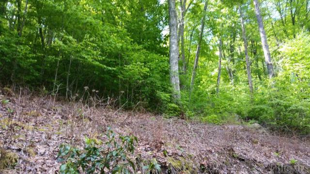13 Captiva Mountain Drive, Cullowhee, NC 28723 (MLS #90953) :: Pat Allen Realty Group