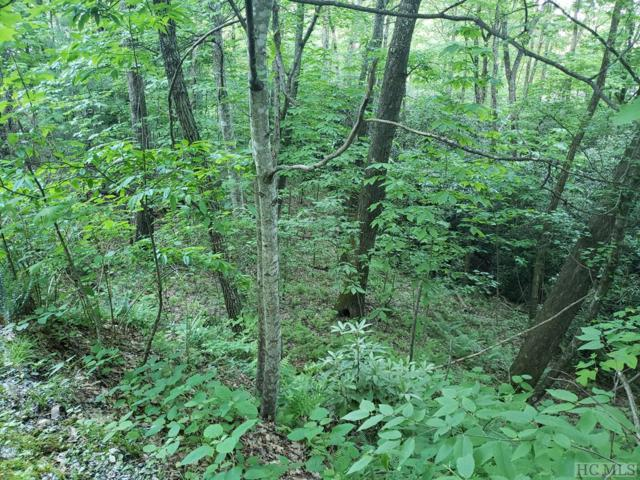 Lot 121 Kestral Court, Sapphire, NC 28774 (MLS #90990) :: Berkshire Hathaway HomeServices Meadows Mountain Realty