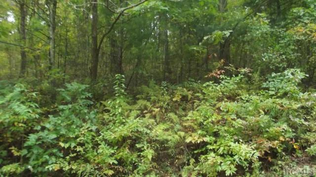 n/a Brown Mountain Road, Scaly Mountain, NC 28775 (MLS #91003) :: Berkshire Hathaway HomeServices Meadows Mountain Realty