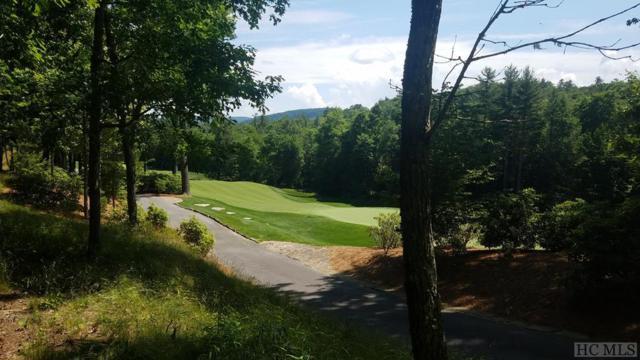 Lot E148 Burl Lane, Cashiers, NC 28717 (MLS #91092) :: Berkshire Hathaway HomeServices Meadows Mountain Realty
