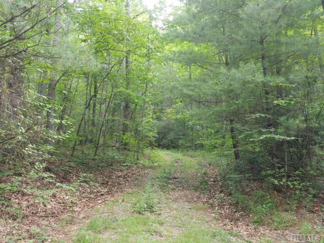 1742 + Shortoff Road, Highlands, NC 28741 (MLS #91157) :: Berkshire Hathaway HomeServices Meadows Mountain Realty