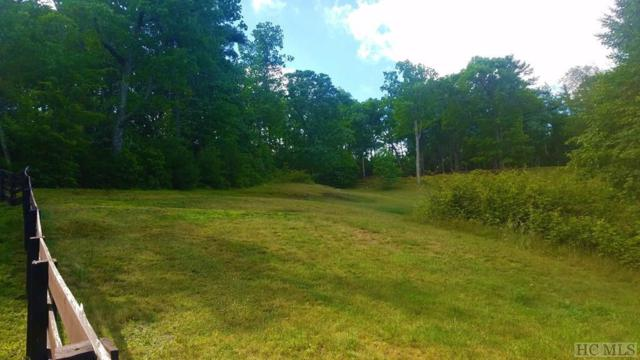 Lot 38 Mountain Meadow Lane, Cashiers, NC 28717 (MLS #91244) :: Pat Allen Realty Group