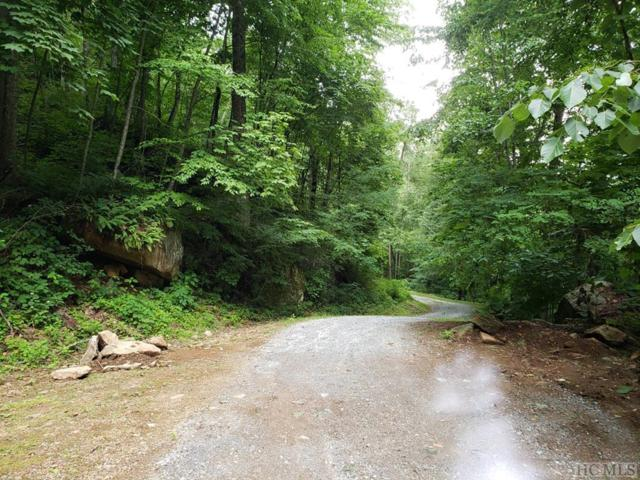 69&70 Parachute Ridge, Glenville, NC 28736 (MLS #91359) :: Berkshire Hathaway HomeServices Meadows Mountain Realty