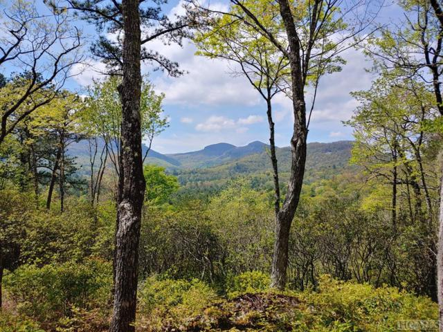 0 Hawk Mountain Road, Lake Toxaway, NC 28747 (MLS #91405) :: Pat Allen Realty Group
