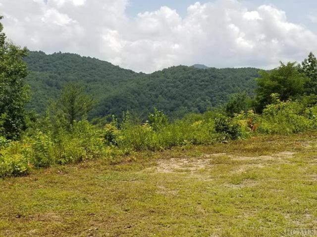 tbd Highland Gap Road, Scaly Mountain, NC 28775 (MLS #91441) :: Pat Allen Realty Group