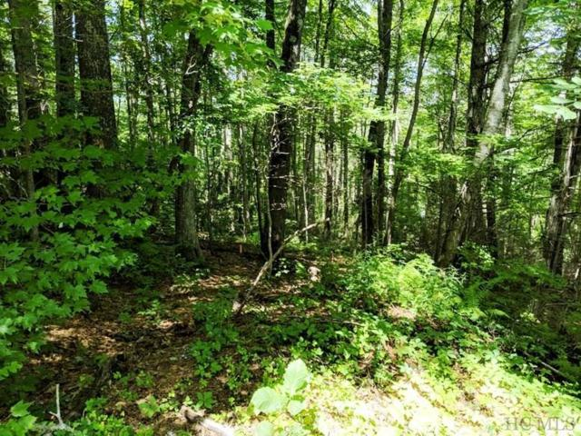 Lot#13 High Meadow Road, Cullowhee, NC 28723 (MLS #91446) :: Berkshire Hathaway HomeServices Meadows Mountain Realty