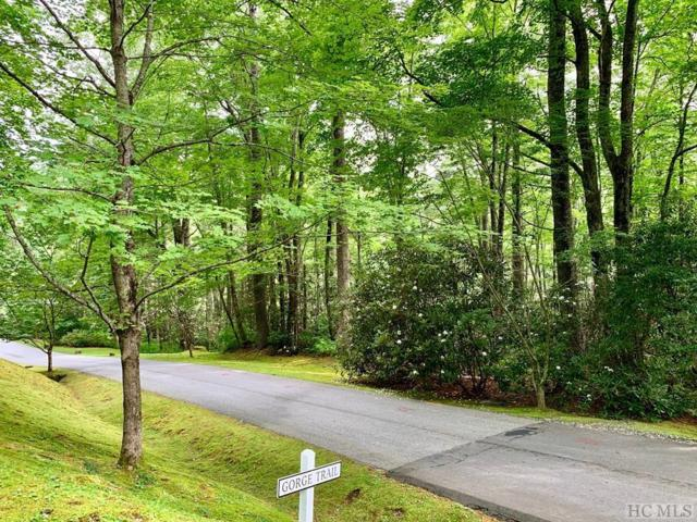 Lot 7 Gorge Trail Road, Cashiers, NC 28717 (MLS #91502) :: Pat Allen Realty Group