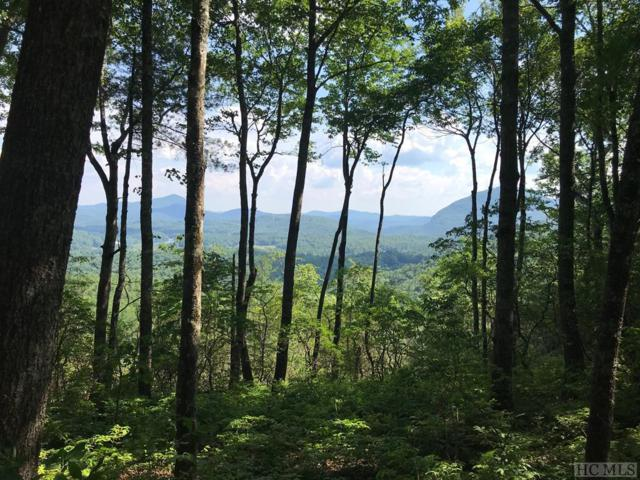 63 Rambouillet Road, Cashiers, NC 28717 (MLS #91503) :: Pat Allen Realty Group