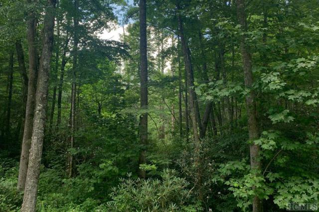 E-164 North High Mountain Drive, Cashiers, NC 28717 (MLS #91598) :: Berkshire Hathaway HomeServices Meadows Mountain Realty