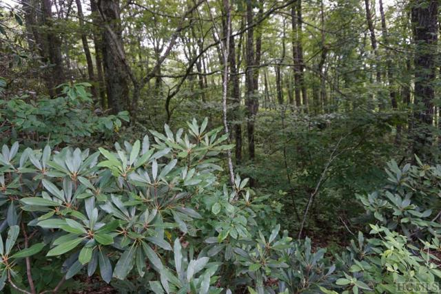 TBD Whiteside Mountain Road, Highlands, NC 28741 (MLS #91632) :: Pat Allen Realty Group