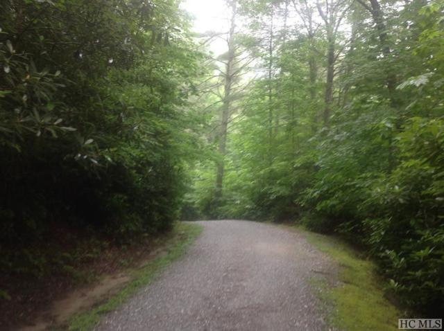 0 R U Lost Lane, Cashiers, NC 28717 (MLS #91643) :: Pat Allen Realty Group