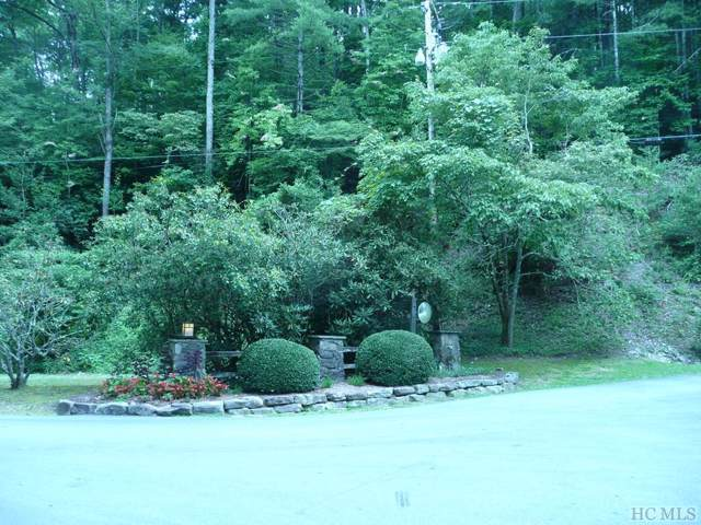 TBD Whiteside Cove Road, Cashiers, NC 28717 (MLS #91752) :: Pat Allen Realty Group