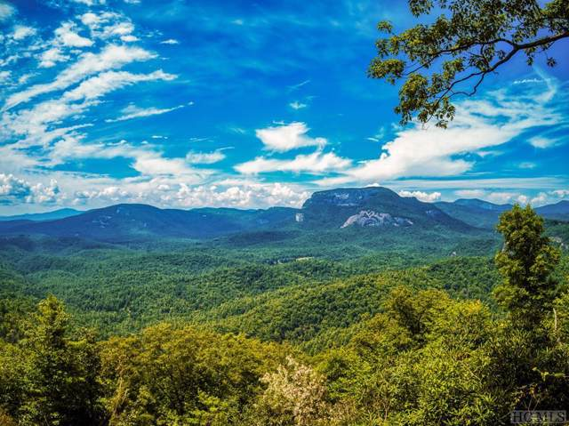LT 5 L Little Terrapin Road, Cashiers, NC 28717 (MLS #91763) :: Pat Allen Realty Group