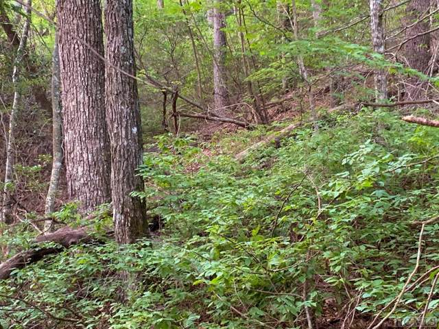 Lot 43 Spring Forest Road, Sapphire, NC 28774 (MLS #91791) :: Berkshire Hathaway HomeServices Meadows Mountain Realty