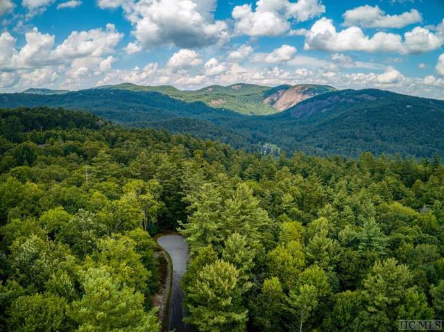 39, 40 Loblolly Lane, Cashiers, NC 28717 (MLS #91850) :: Pat Allen Realty Group