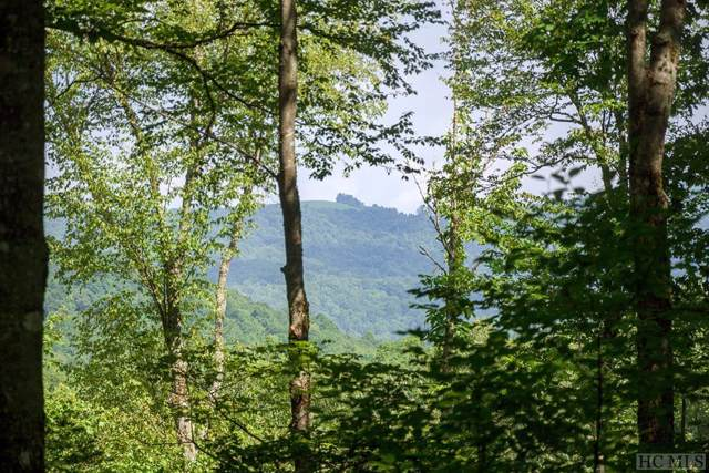 Lot 41 Starry Night Lane, Glenville, NC 28736 (MLS #91930) :: Berkshire Hathaway HomeServices Meadows Mountain Realty