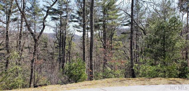 Lot 10 Catesby Trail, Cashiers, NC 28717 (MLS #92016) :: Pat Allen Realty Group