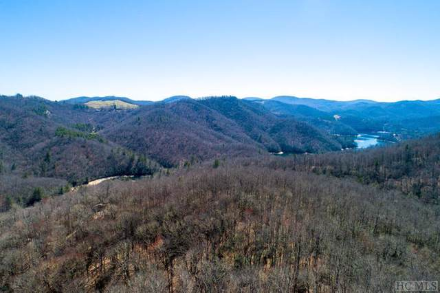 Lot #9 Forest View Lane, Tuckasegee, NC 28783 (MLS #92075) :: Pat Allen Realty Group