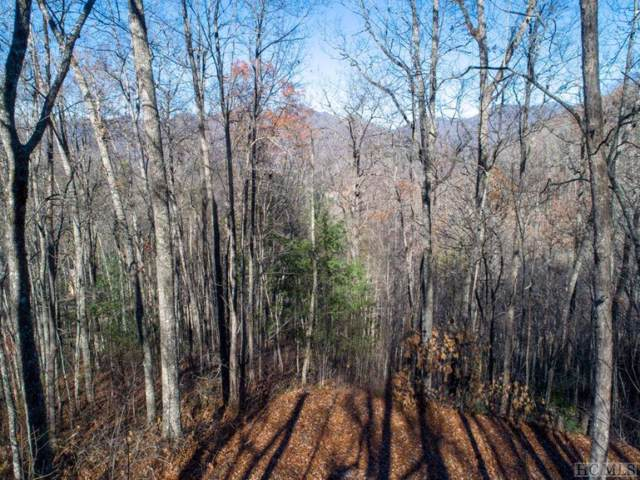 Lot #89 Woodbridge Drive, Tuckasegee, NC 28783 (MLS #92083) :: Pat Allen Realty Group