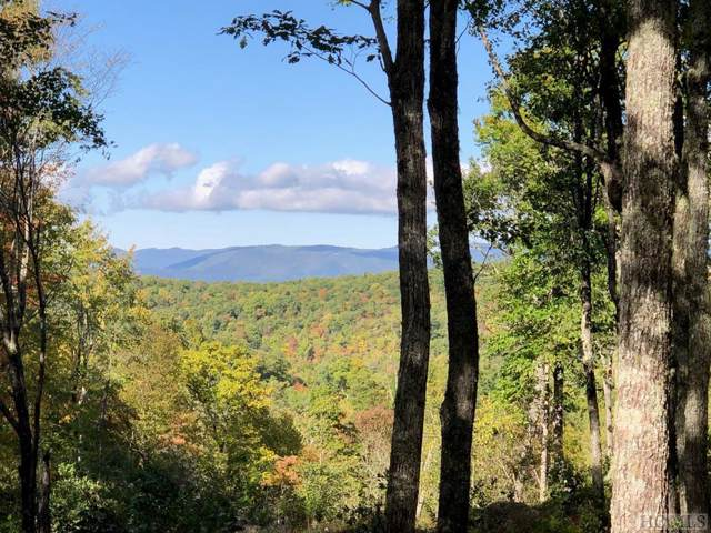 Glenville, NC 28736 :: Berkshire Hathaway HomeServices Meadows Mountain Realty