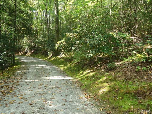 Lot 9 Lost Cove Road, Cashiers, NC 28717 (MLS #92265) :: Berkshire Hathaway HomeServices Meadows Mountain Realty