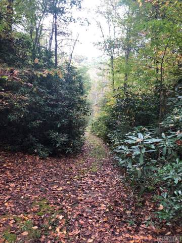 Lot 3 Yellow Mountain Road, Cashiers, NC 28717 (MLS #92318) :: Pat Allen Realty Group