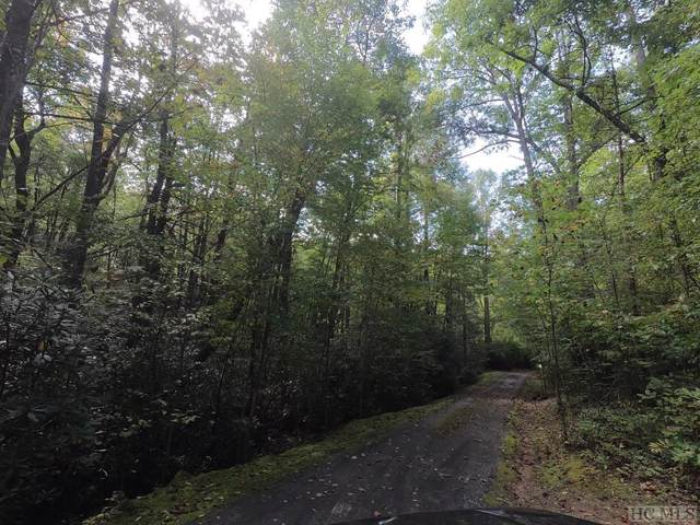 Lot 57 Pond View Lane, Dillard, GA 30537 (MLS #92333) :: Berkshire Hathaway HomeServices Meadows Mountain Realty