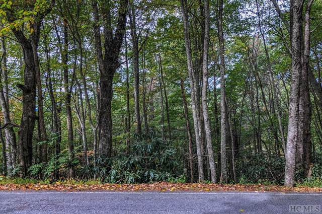Lot 1 Ridgepole Drive, Sky Valley, GA 30537 (MLS #92335) :: Pat Allen Realty Group