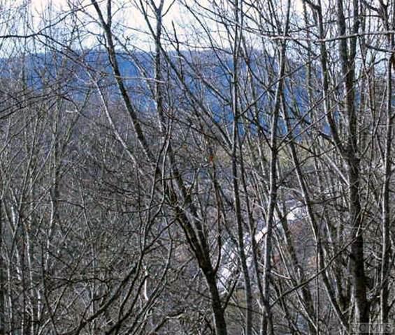 TBD Falls View Drive, Lake Toxaway, NC 28747 (MLS #92399) :: Pat Allen Realty Group