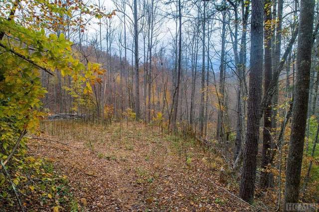 00 Hyacinth Court, Sylva, NC 28779 (MLS #92431) :: Pat Allen Realty Group