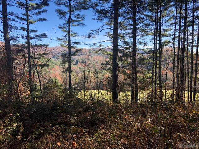 Lot 6 Spring Meadow Lane, Glenville, NC 28736 (MLS #92470) :: Berkshire Hathaway HomeServices Meadows Mountain Realty