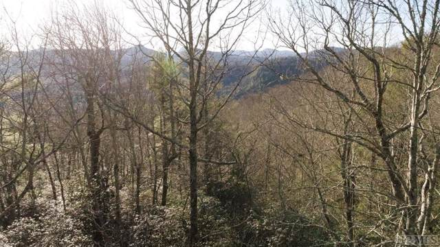11E Summit Falls Road, Sapphire, NC 28774 (MLS #92546) :: Berkshire Hathaway HomeServices Meadows Mountain Realty