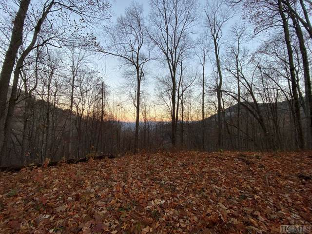 TBD 00/Tbd Woods Rd, Waynesville, NC 28785 (MLS #92557) :: Pat Allen Realty Group