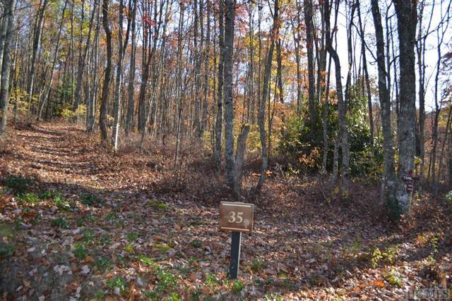 Lot 35 New Settler's Way, Glenville, NC 28717 (MLS #92563) :: Berkshire Hathaway HomeServices Meadows Mountain Realty