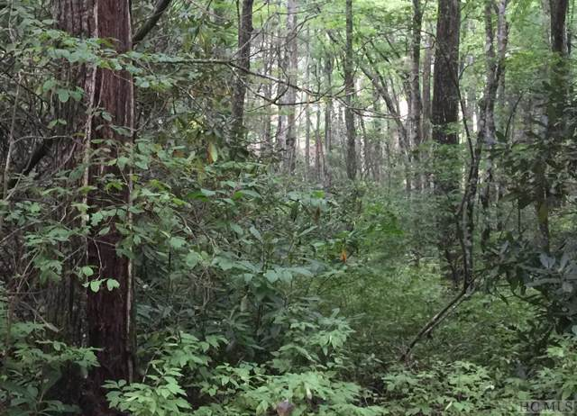 Lot 93 Overlook Drive, Glenville, NC 28736 (MLS #92621) :: Berkshire Hathaway HomeServices Meadows Mountain Realty