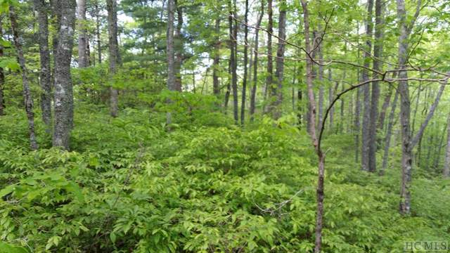 Lot 19 Captiva Mountain Drive, Cullowhee, NC 28723 (MLS #92690) :: Landmark Realty Group