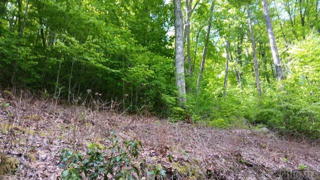 13 Captiva Mountain Drive, Cullowhee, NC 28723 (MLS #92691) :: Landmark Realty Group