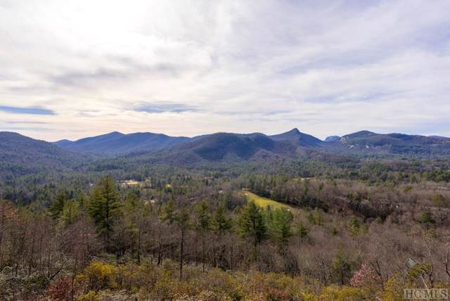 341 Trillium Court, Sapphire, NC 28774 (MLS #92694) :: Berkshire Hathaway HomeServices Meadows Mountain Realty