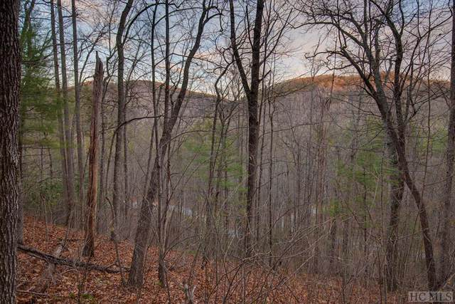 Lot 101 Lonesome Valley Rd, Sapphire, NC 28774 (MLS #92735) :: Landmark Realty Group